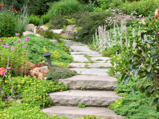 Illustration Comment réaliser une allée de jardin en béton